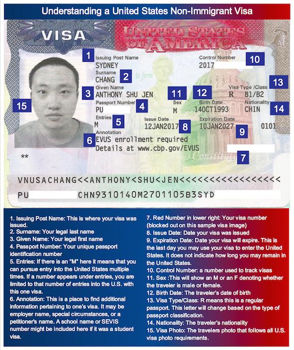 Image of a United States Non-Immigrant Visa