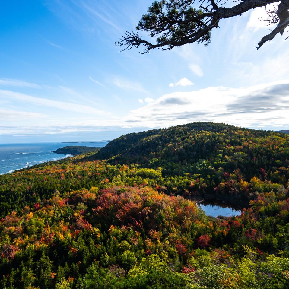 Bar Harbor Maine Fall Foliage