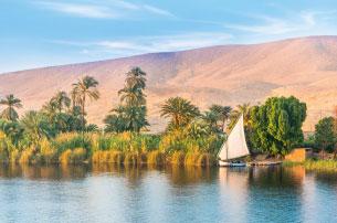 Egypt Landscape