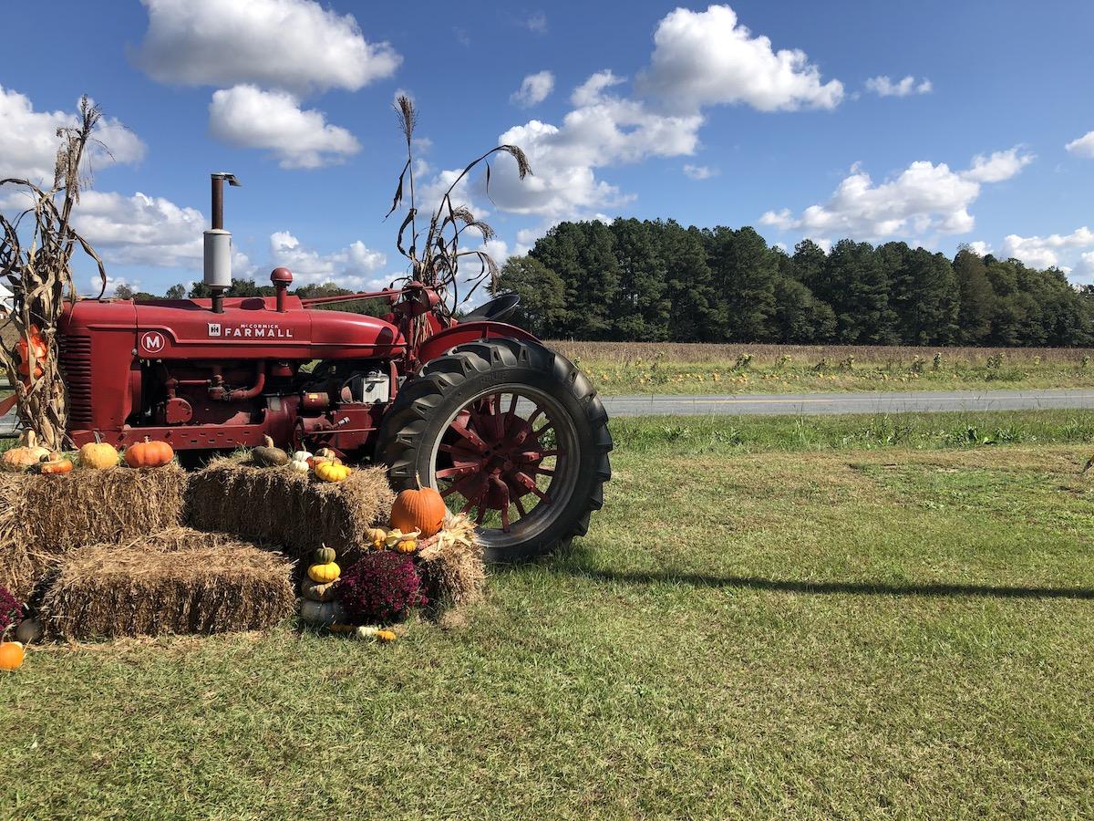 October 2020 Photo Club Winner - Harvest