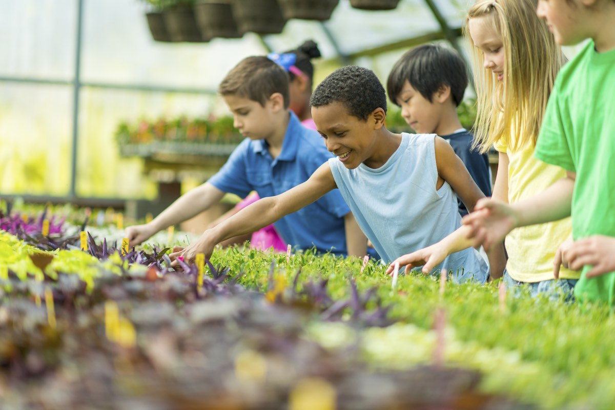 Best Educational Vacations for Children