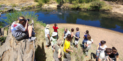 Group Touring River Bank