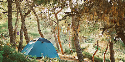 US States Ranked for Best Camping