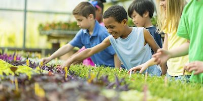 Top Educational Vacations Let Kids Have Fun While Learning